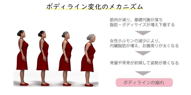 体形の変化