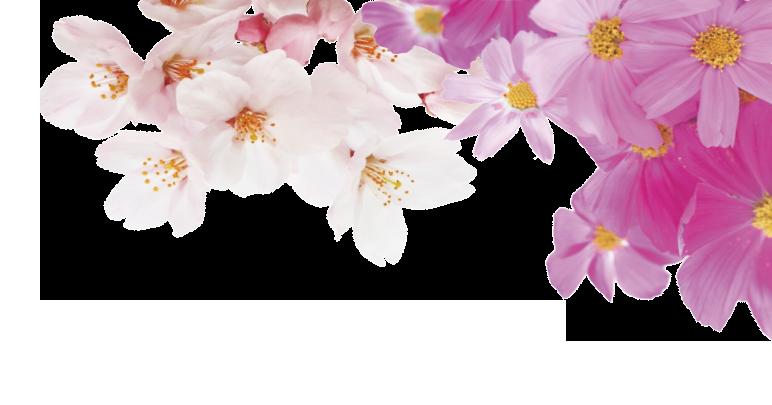 コンセプトエリア背景の右花