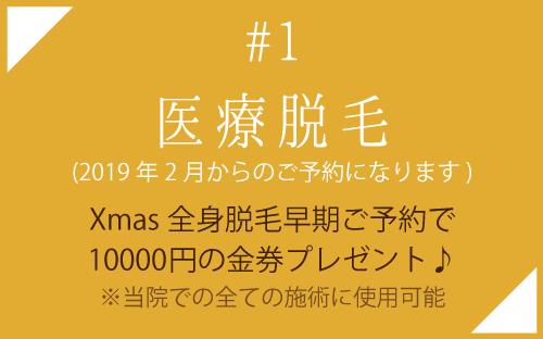 医療脱毛クリスマスキャンペーン