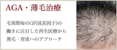 AGA・薄毛治療は、再生医療で発毛・育成へのアプローチを。