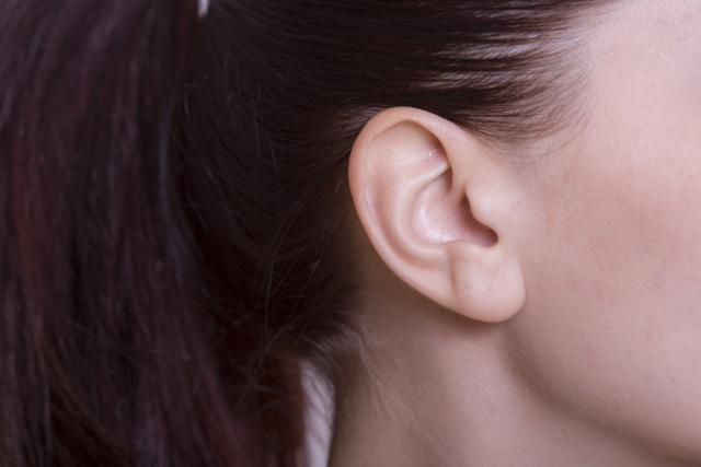 耳の後ろの皮膚イメージ