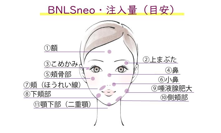 BNLSの注入部位イメージ