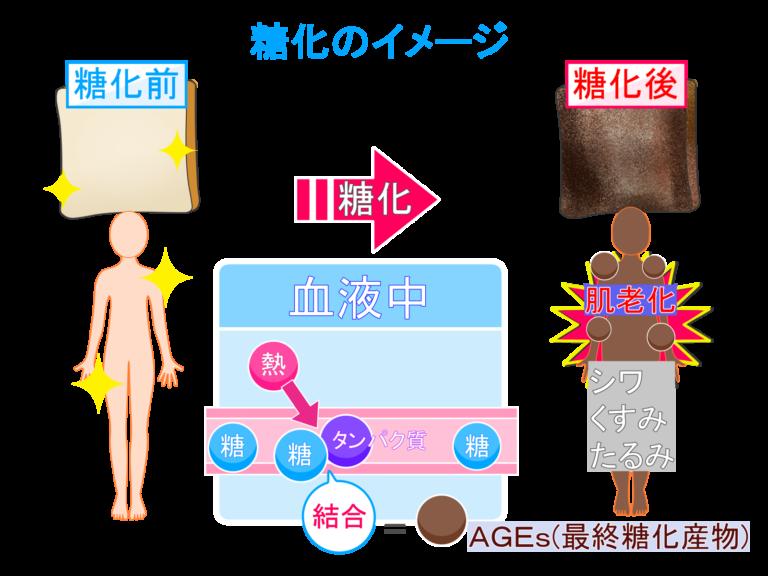 お肌を劣化させる「肌糖化」ご存じですか?