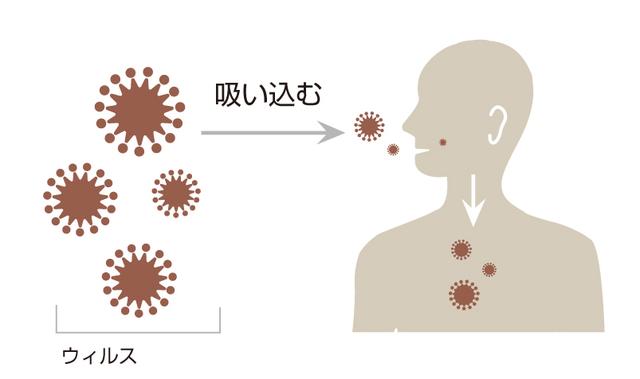 NK細胞療法ウイルス