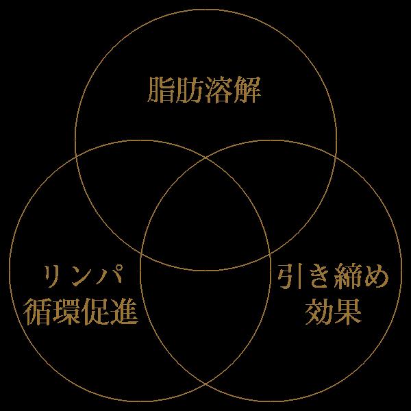 BNLSneoの3つの特徴